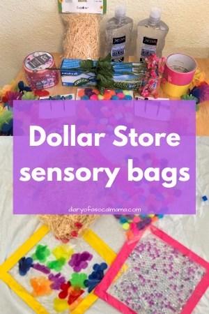 Dollar store sensory bags
