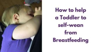 Weaning a Toddler: Our self weaning story & tips to help you