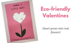 Eco-friendly Valentines card: For classmates or students
