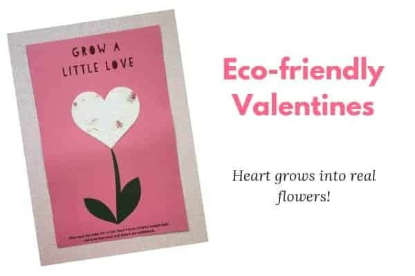 Eco friendly valentine's day gifts