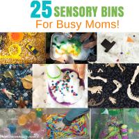25 Easy Sensory Bin Ideas!