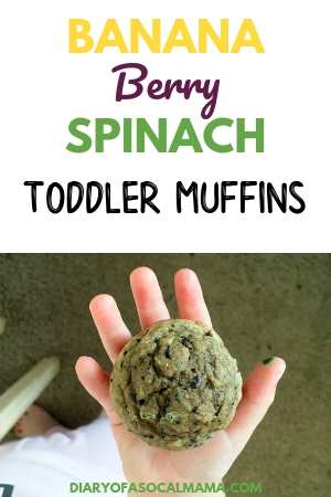 banana berry spinach muffin recipe