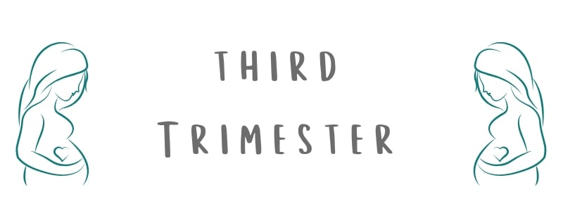 pregnancy third trimester