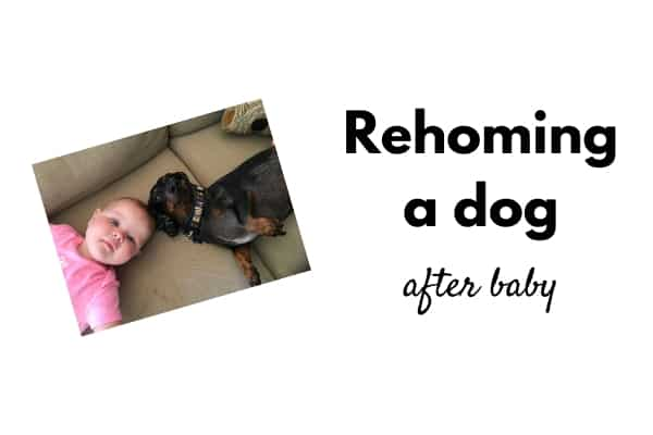 rehoming a dog after baby