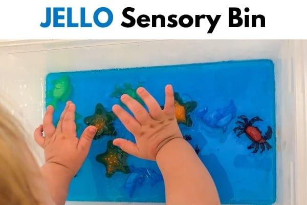 Jello sensory bin title image